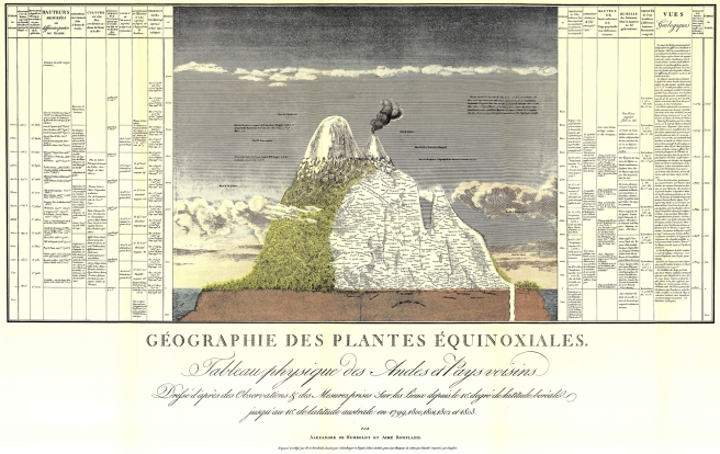 Humboldt's 1805 map of plants encountered on Chimborazo in the Andes. (Buttimer)