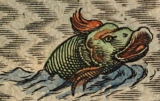 Photo of sea monster from 1616 Bertius map of Bay of Cadiz. Monster is colored green and red.