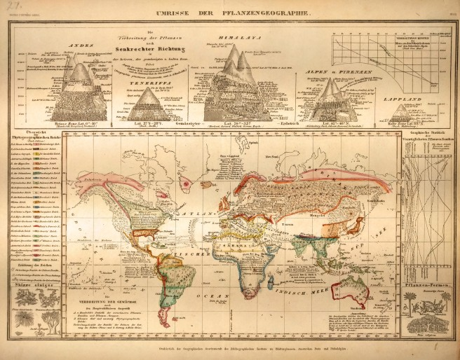 Photo of Meyer's Plant Geography, c1850. Map showing the distribution of plant life across the planet along with distribution across altitudes of various mountains.